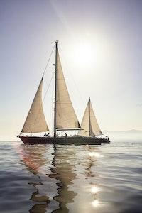 Sailing Boat Revolution